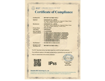 IP65 certificate for LED strips